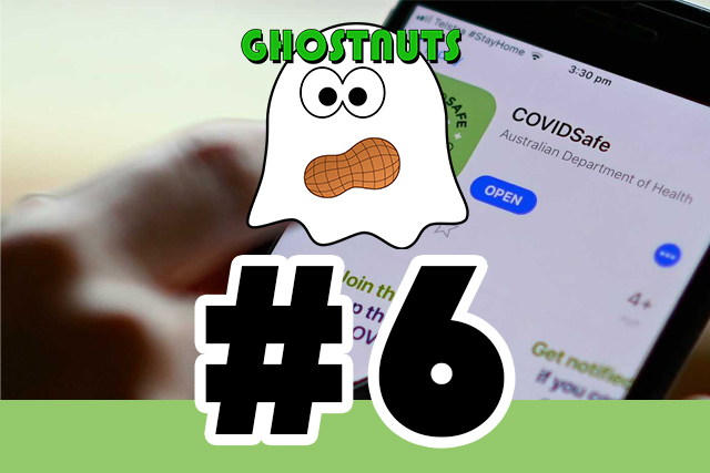 #6 – COVID-19 Tracking App + Madeline McCann 🍕 feat The Turtle